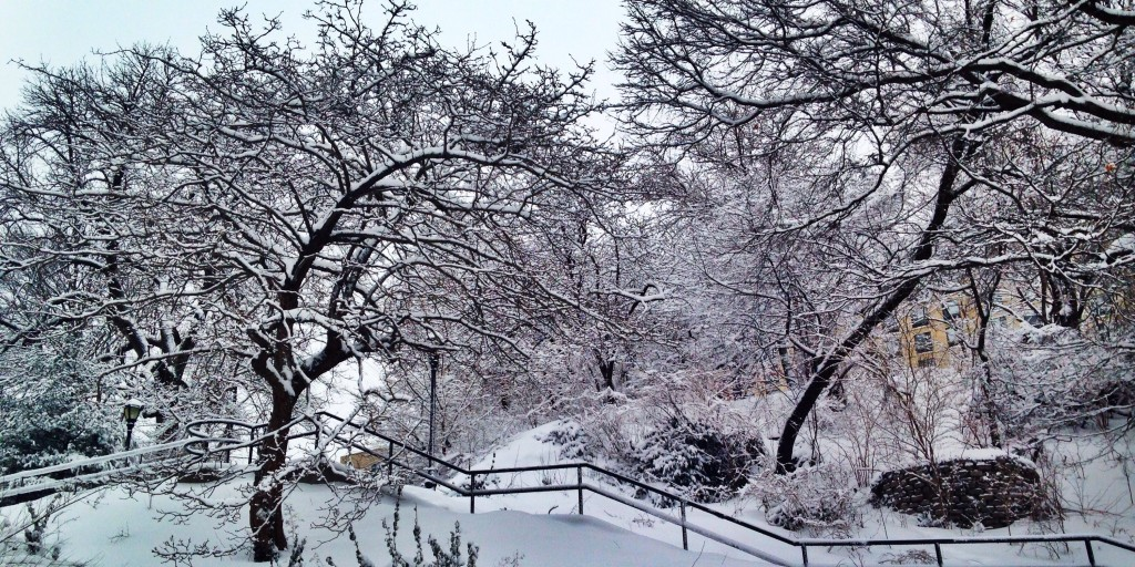 Snow covered trees around a snow covered hill and a set of stairs with a hand rail. | Pleasure in Chronic Pain: Simple Mindfulness Techniques for Better Sex | Passion by Kait